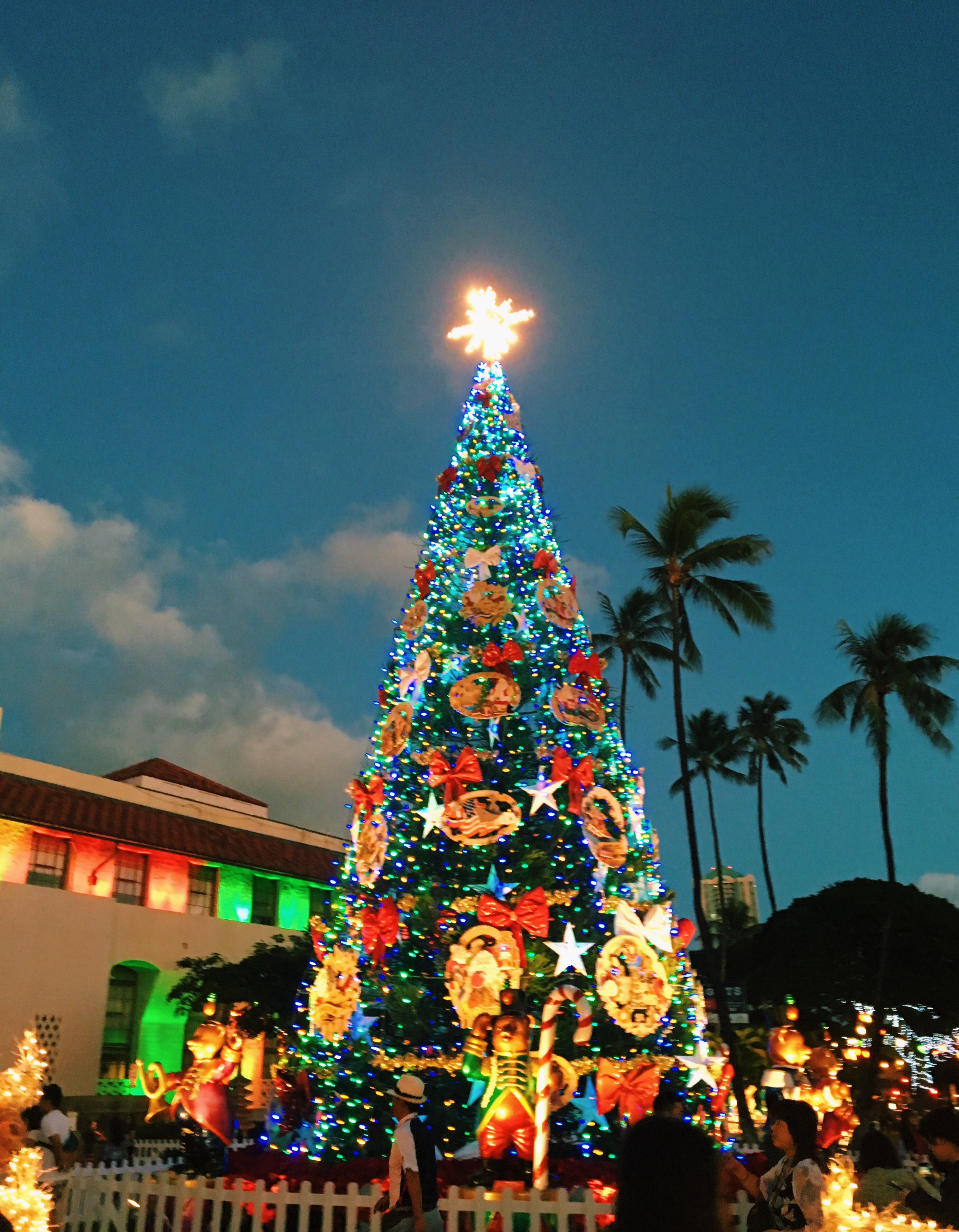 Christmas Tree Hawaii Part - 15: Then, We Headed Off To Downtown Honolulu To See All Of The Christmas  Lights. It Was Hard To Miss The Gigantic Christmas Tree, Lit Up And Covered  In ...